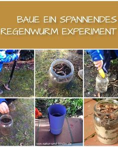 Explore the habitat of earthworms with your children. Source by Mad Science, Earthworms, Habitats, Children, Kids, Explore, Education, Stress Ball, Anti Stress