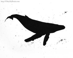 One of the best whale silhouettes I've seen.
