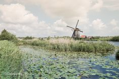 Windmill, Kinderdijk, The Netherlands by Georgianna Lane