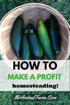 Find out how to make a profit homesteading here!