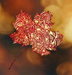 I painted and decorated this beautiful autumn leaf with golden liquid ink during inktober 2019. I absolutely love the result! I plan to paint more of these and hang them on top of our white curtains. <3