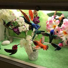 The display of my works at Miyagi Children's hospital in August ✨Needle felted Hummingbird  宮城県立こども病院 8月の展示 ハチドリ✨ #Needlefelting #felting #bird #childrenshospital #handmade #wool #instaart #nature #feltedanimal #instabird #hummingbird #こども病院 #野鳥 #鳥 #ハチドリ #feltro #filz #fieltro #feutre #войлок #羊毛毡 #양모펠트 #Aves #Птицы