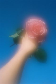 Photo Diary: Roses Are Red by Alba Yruela - Urban Outfitters - Blog