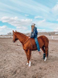 Western Riding, Horse Riding, Cute Horses, Horse Love, Horse Photos, Horse Pictures, Most Beautiful Animals, Beautiful Horses, Cavalo Wallpaper