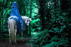 Gli Arcani Supremi (Vox clamantis in deserto - Gothian): Fairytales. Forest land