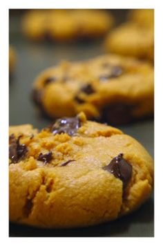 FODMAP Friendly and Fit: Peanut Butter Chocolate Chip Cookies  I baked for 15 minutes