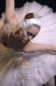 Swan Queen...My inner landscape