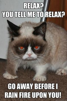 Internet celebrity Grumpy Cat, the face of countless memes, has died at the age of her owners confirmed Friday. Here is 20 grumpy cat memes. Grumpy Cat Quotes, Funny Grumpy Cat Memes, Funny Cats, Funny Animals, Animal Memes, Super Funny Pictures, Funny Animal Pictures, Evil Pictures, Gato Grumpy