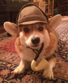 Sherlock Holmes Dog or Pet Hat #SHH