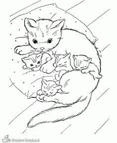 kleurplaten van poezen en kittens