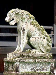 Stone Lion, Japanese Mythology, Fu Dog, Ethereal, Lions, Sculpting, Wolf, Lion Sculpture, Asia