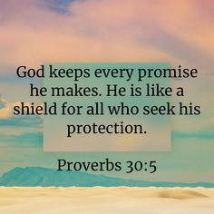 """Proverbs """"God keeps every promise he makes. He is like a shield for all who seek his protection. Salvation Scriptures, Scripture Verses, Bible Verses Quotes, Bible Scriptures, Faith Quotes, Affirmation Quotes, Prayer Quotes, Spiritual Quotes, Frases"""