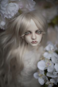 White Orchid | Flickr : partage de photos ! -- I love Candygears dolls