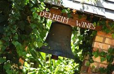 A place to experience the many different wines Stellenbosch has to offer. Different Wines, Table Mountain, Tourist Places, Cape Town, Garden Tools, Outdoor Decor, Yard Tools, Outdoor Power Equipment
