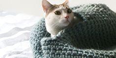 4 tutoriels gratuits pour crocheter un panier pour son chat