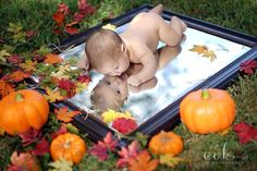 Miguels first Halloween pictures 2015 Fall Baby Pictures, Newborn Baby Photos, Cute Baby Pictures, Newborn Pictures, Halloween Baby Pictures, Baby First Halloween, Monthly Baby Photos, Monthly Pictures, Halloween Photography