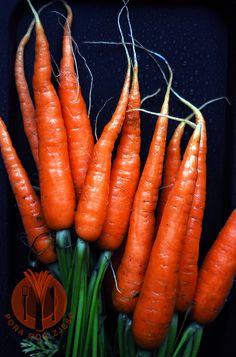 Food photography, food art - carrots.