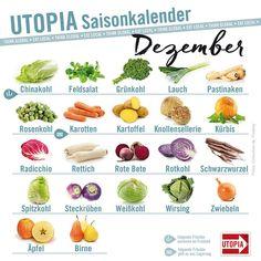 In unserem monatlichen Saisonkalender erfahrt ihr, welches Obst und Gemüse man gerade aus heimischem Anbau kaufen kann. Im Dezember gibt es vermehrt Lagerware, ein paar Gemüsesorten wachsen aber auch noch in der kalten Jahreszeit. Mehr Infos und alle Monate bei uns auf der Seite!