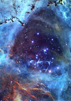 Rosette Nebula Stardust