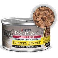 Urinary Tract Cat Food Homemade