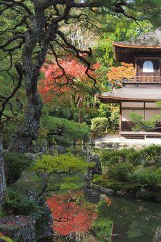 Osaka, Kyoto, Voyage Nepal, House Styles, Travel, Home Decor, Santiago, Buddhist Temple, Shades Of Green