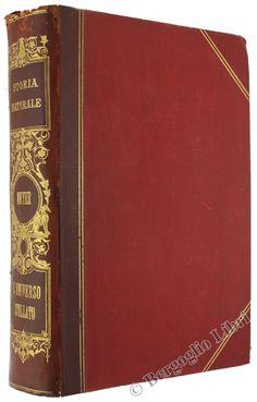 L'UNIVERSO STELLATO. Trattato di astronomia popolare. Meyer Guglielmo. 1900 - Bergoglio Libri d'Epoca