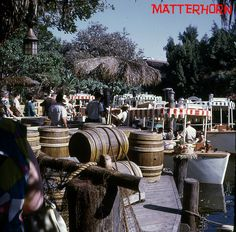 Early shot observed by the height of the trees. Jungle Cruise Disneyland, Ferry Boat, Tiki Room, Vintage Disneyland, Disney Parks, In The Heights, Trees, California, Table Decorations