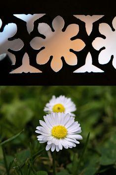 A les finestres de l'entresol, trobem representades les margarides, unes de les flors que més es repeteixen al Palau. Simbolitzen el somni, la innocència, l'amor i l'oracle. Superhero Logos, Art, Spring, Architecture, Kunst, Art Education, Artworks