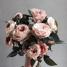 . Lesson Order Katalk ID vaness52 E-mail vanessflower@naver.com . #vanessflower #vaness #flower #florist #flowershop #handtied #flowergram #flowerlesson #flowerclass #바네스 #플라워 #바네스플라워 #플라워카페 #플로리스트 #꽃다발 #부케 #원데이클래스 #플로리스트학원 #화훼장식기능사 #플라워레슨 #플라워아카데미 #꽃수업 #꽃주문 #부케 #花 #花艺师 #花卉研究者 #花店 #花艺 . . #장미 #rose . . 매력적인 색감