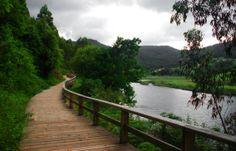 Paseo Fluvial del landro