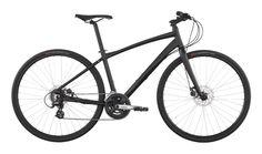 Inc 1 - Urban Road Bike - Belt Drive - Avanti Bikes