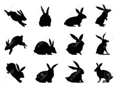 bunny outline - Google Search