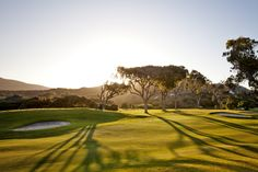 Clovelly Golf Club in Cape Town. Hello Weekend, Cape Town, Golf Clubs, Golf Courses, Tees, Gold, Beautiful, T Shirts, Tee Shirts