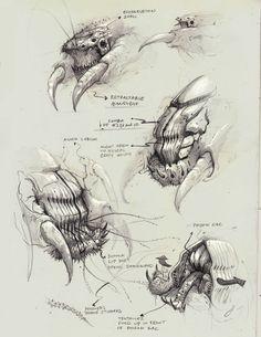 Sketchbook: Bobby Rebholz — polycount