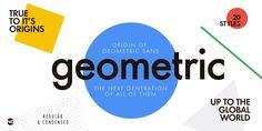 Futura Next® - Webfont & Desktop font « MyFonts