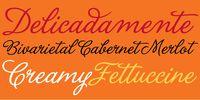 La Portenia Font Family. Beautiful!