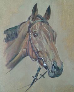 Finished head study, Scottish Grand National winner 2016, Vicente. ..oil on linen canvas 10x14 #horsesinart #horsesofinstagram #equestrian #equestrianart #equestrianlife #horses #racing #nationalhuntracing #ayr #scotishgrandnational #dicheat #paulnichollsracing
