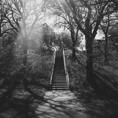 Stairs near Lake Nokomis in Minneapolis | Bradley Hanson | VSCO Grid