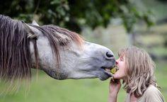 Pferde-Fütterung  - aber richtig. Tipps zur Grundlagenfütterung auf der Reitseite der Kieler Nachrichten und auf www.kn-online.de/reiten Foto: Andreas Thomsen