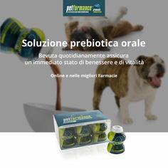 Petformance è la prima soluzione prebiotica orale per cani. Bevuta quotidianamente assicura un immediato stato di benessere e di vitalità. #amailtuocane