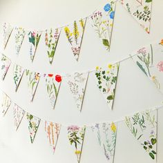 I've just found British Wild Flower Bunting. Beautiful paper bunting with pretty wild flower pictures - perfect for a wedding or to hang in your home to bring the outside in! Paper Bunting, Bunting Banner, Banners, Buntings, Garland Wedding, Wedding Decorations, Decor Wedding, Wedding Ideas, Wedding Planning