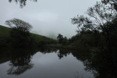 ixopo, south africa - buddhist retreat - cloudy reflections on the dam