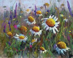 paintings of daisy flowers | Painting my World: Daisy Pastel Painting 8x10