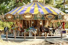 adorable Morgan Carousel at Happy Hollow Park and zoo, San Jose Ca.  Handcrafted animals--none alike.