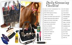 Taking a few minutes to #groom your horse daily will help you both in the long run. Check out our grooming checklist to make sure you're following up on all the necessities! #nobleoutfitters