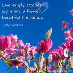 """Tony Samara, author of 'Shaman's Wisdom',  'From the Heart', 'Different Yet the Same' and 'Deeper than Words' was born in England, grew up in Egypt and also in Norway where he discovered the """"Zen Buddhist philosophy"""".   This discovery eventually led him to the """"Mount Baldy Zen Center in California, USA"""" where he learned the spiritual teachings of """"Kyozan Joshu Sasaki."""""""