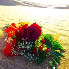 Reise nach Namibia - Genießen Sie 25 € bei Airbnb, Link im Profil Namibia, Floral Wreath, Wreaths, Link, Home Decor, Profile, Travel, Homemade Home Decor, Flower Crowns