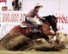 working cow horse - I wanna work on this with my horses!