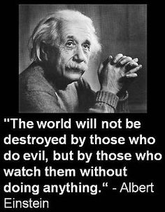 Apathy and inaction are just as harmful as the evil they fail to stop.