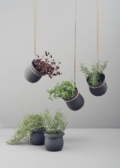grow it pot